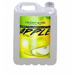 Gel hidroalcohólico Manzana 5 L Gel Hidroalcoholico ProAndre PROMZ-5L